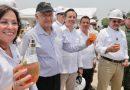 AMLO revela opciones para nombrar a la refinería Dos Bocas