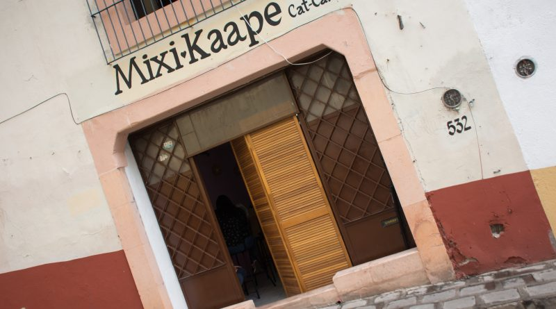 """MixiKaape"" primer Cat-Café en Zacatecas"